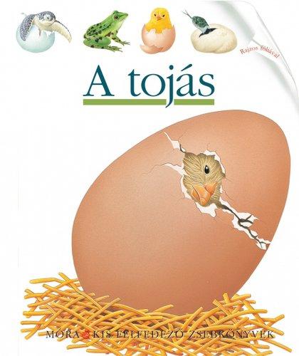 Könyv - Móra Kis felfedező zsebkönyvek #A tojás