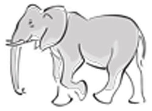Óvodai jelkészlet 16 darabos #Elefánt