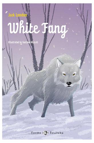 Könyv - WHITE FANG + CD - angol nyelvű gyerekkönyv