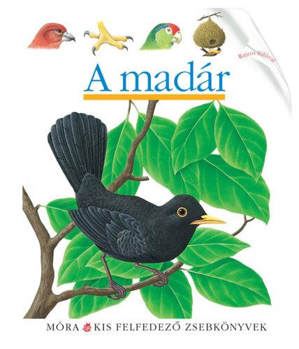 Könyv - Móra Kis felfedező zsebkönyvek #A madár